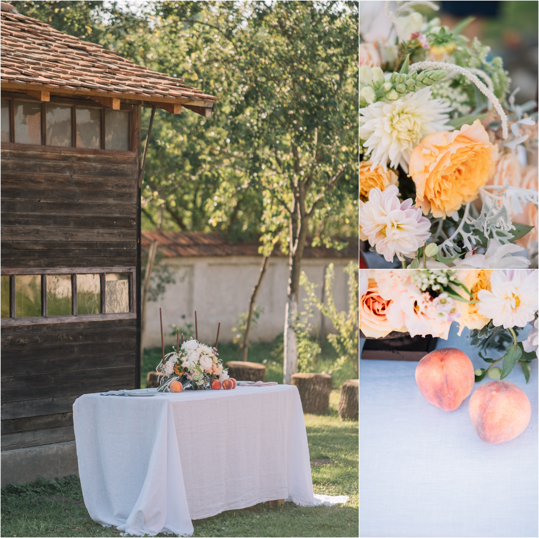 cincsor nunta 18