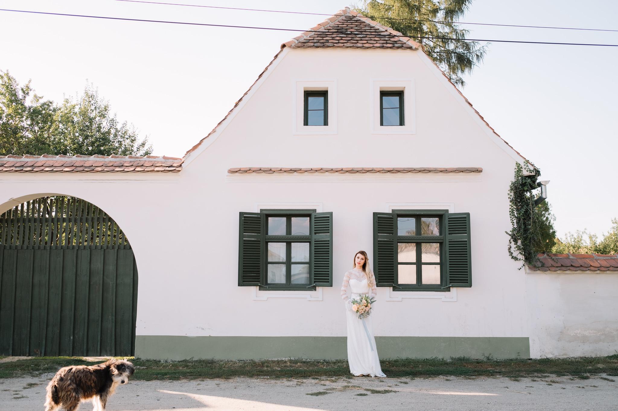cincsor nunta 30
