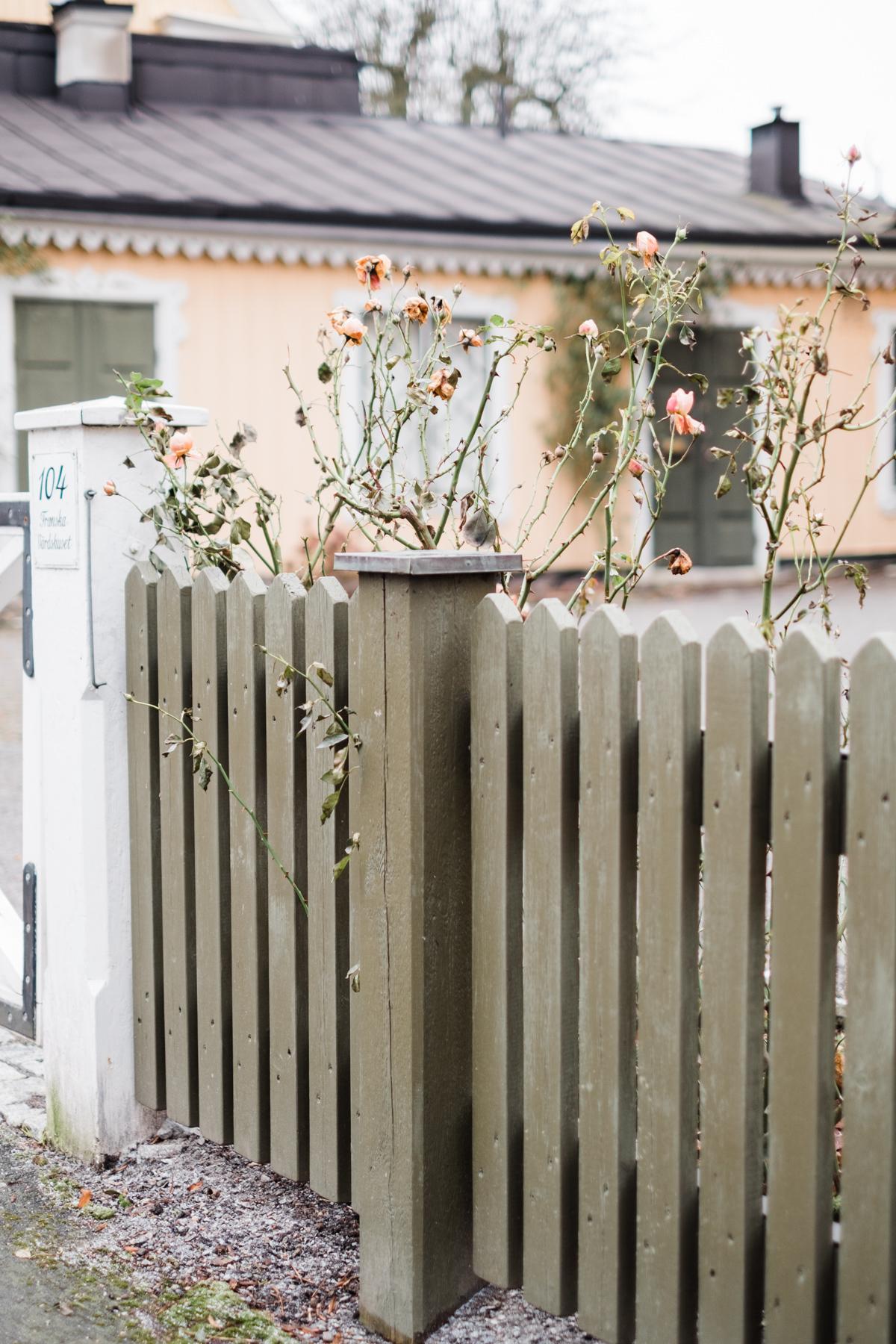 sweden_deersphotography-1014