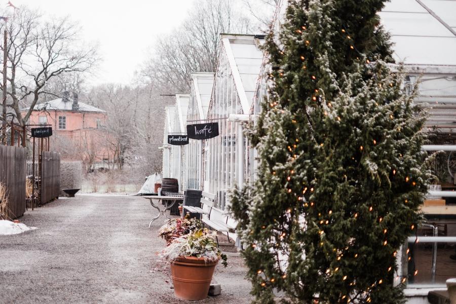 sweden_deersphotography-1079