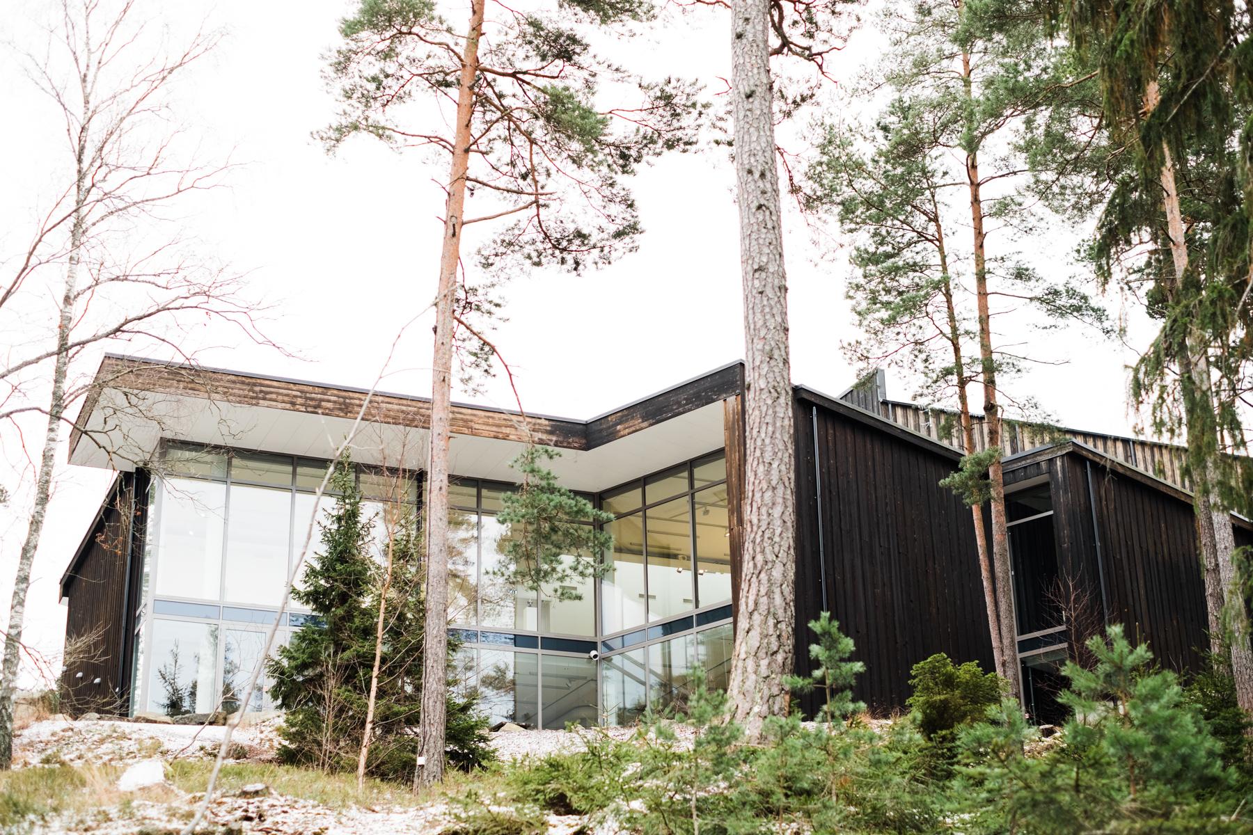 sweden_deersphotography-1088