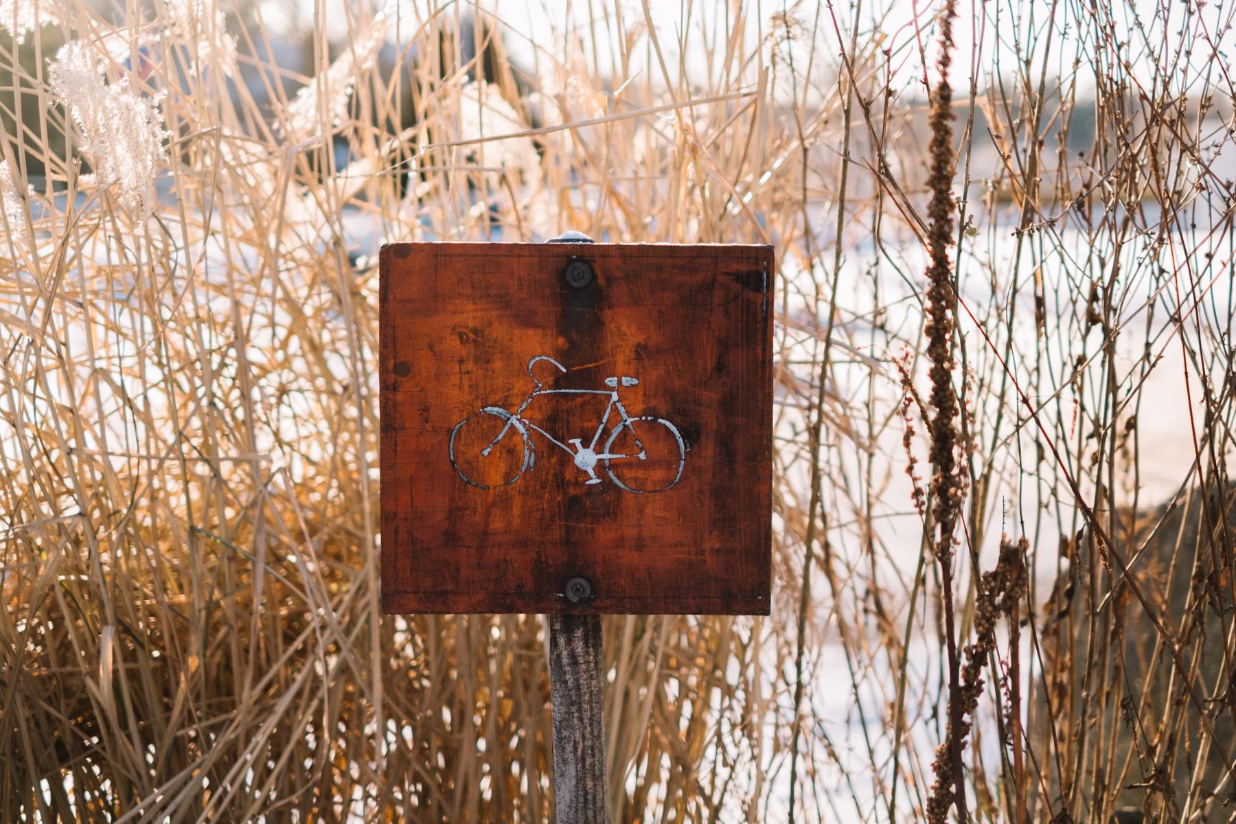 sweden_deersphotography-1107