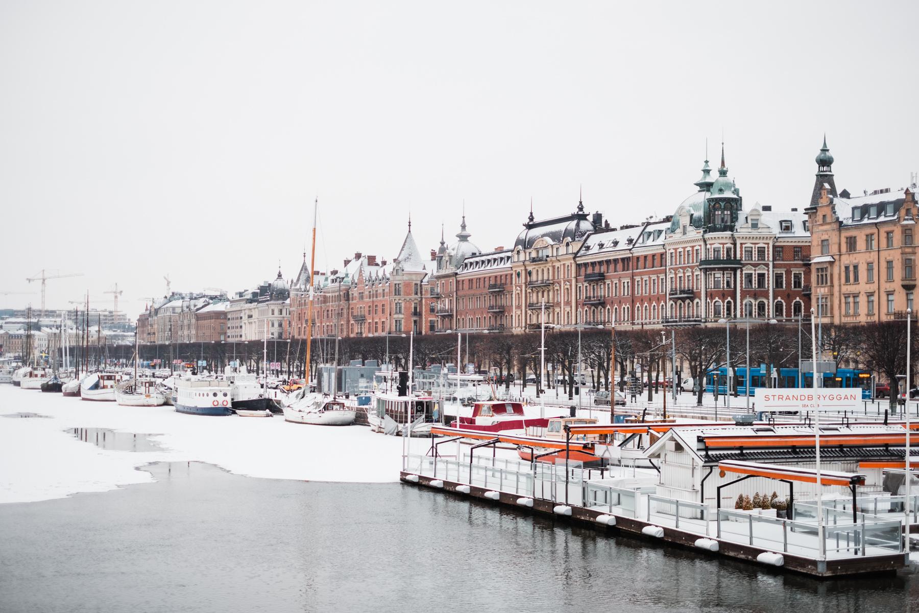 sweden_deersphotography-1117