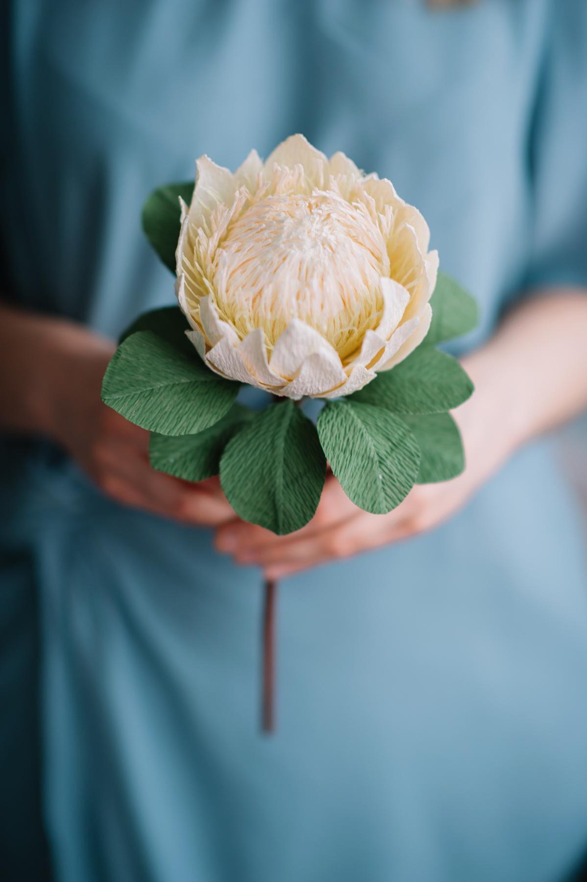 paper flowers_ deersphotography-215