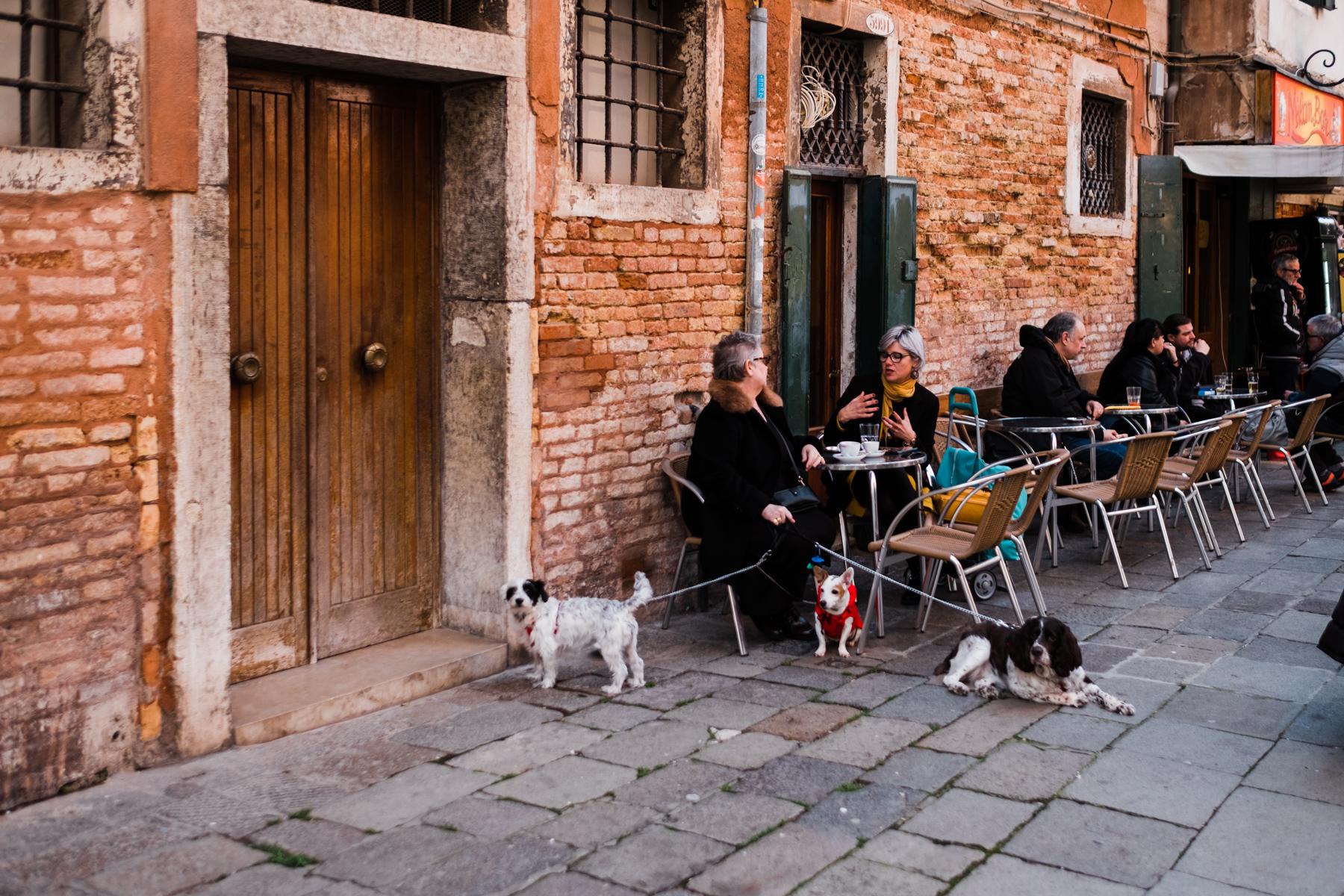 Venice_deersphotography-102