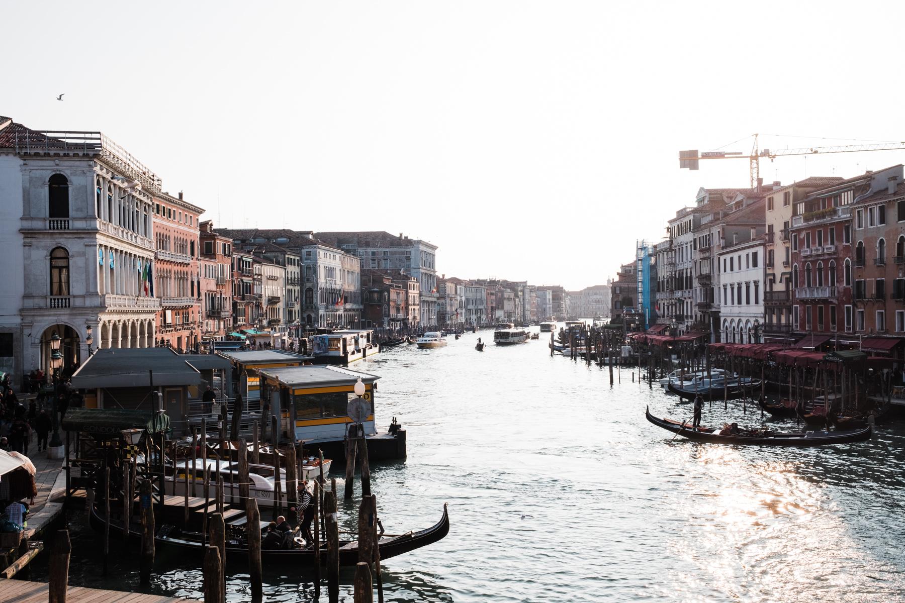 Venice_deersphotography-105
