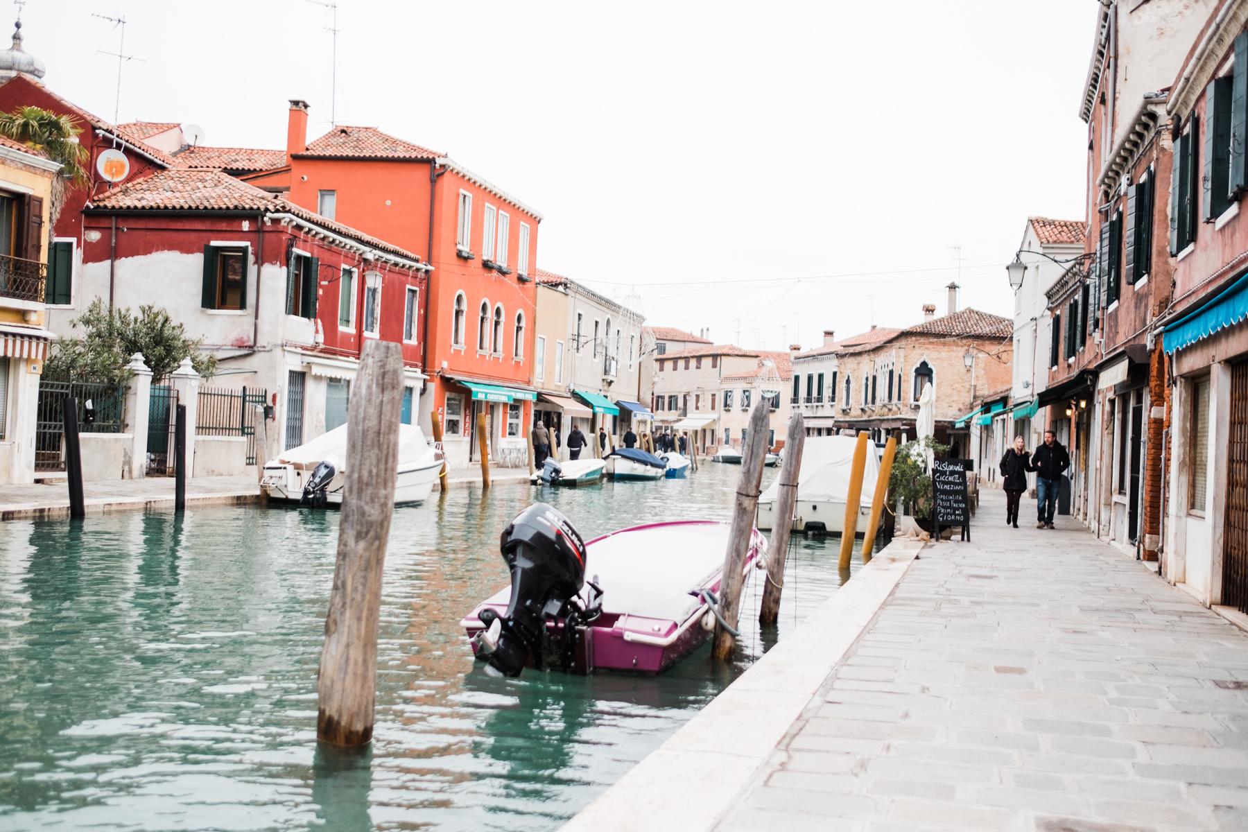 Venice_deersphotography-136