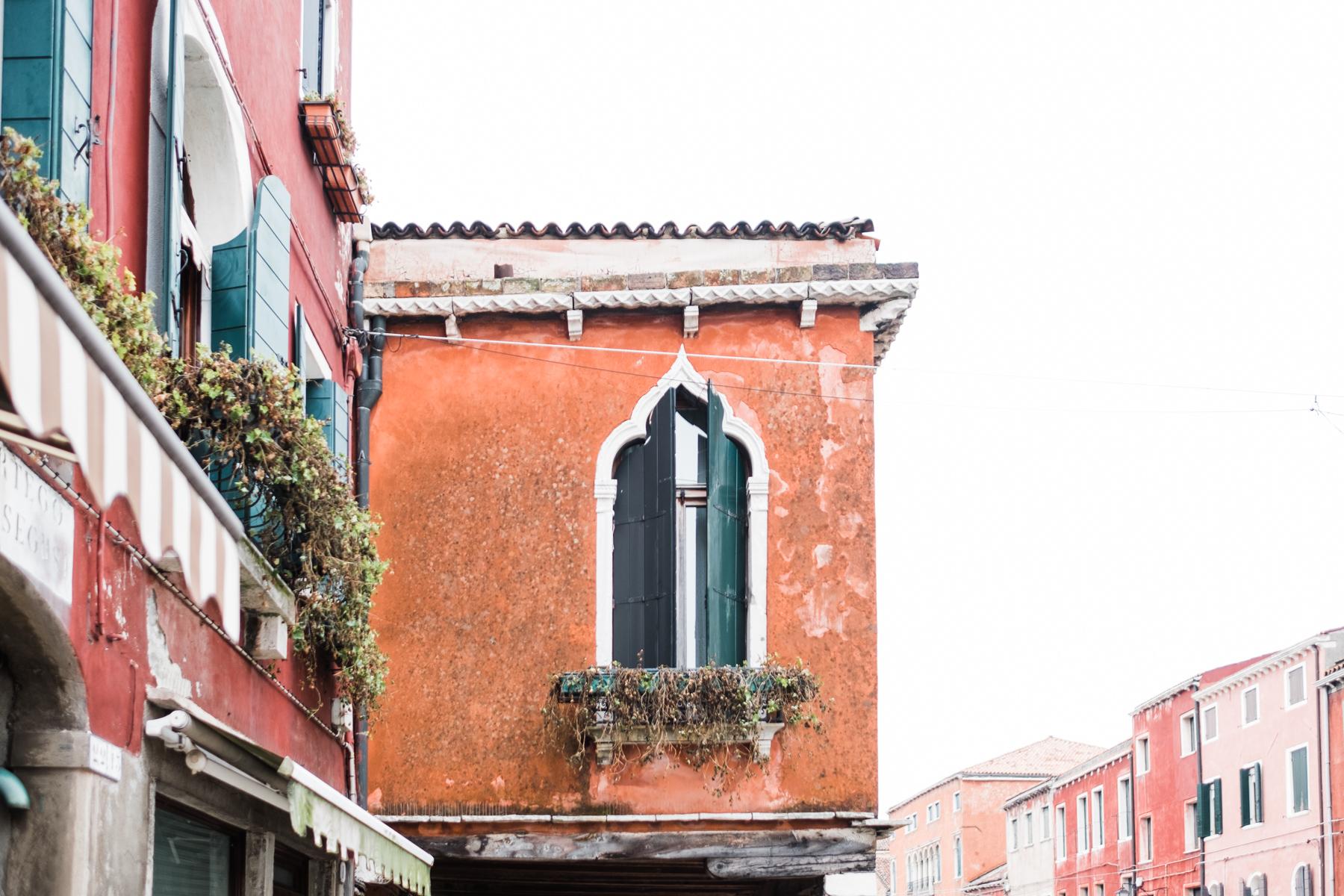 Venice_deersphotography-137