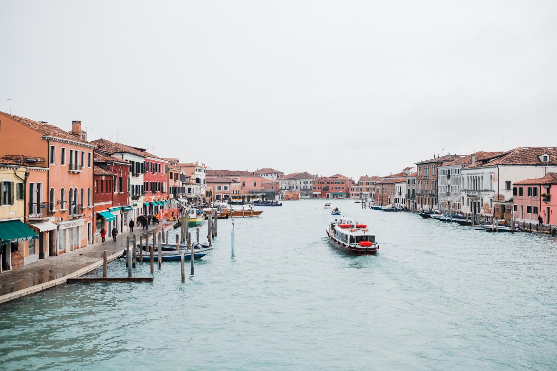 Venice_deersphotography-142