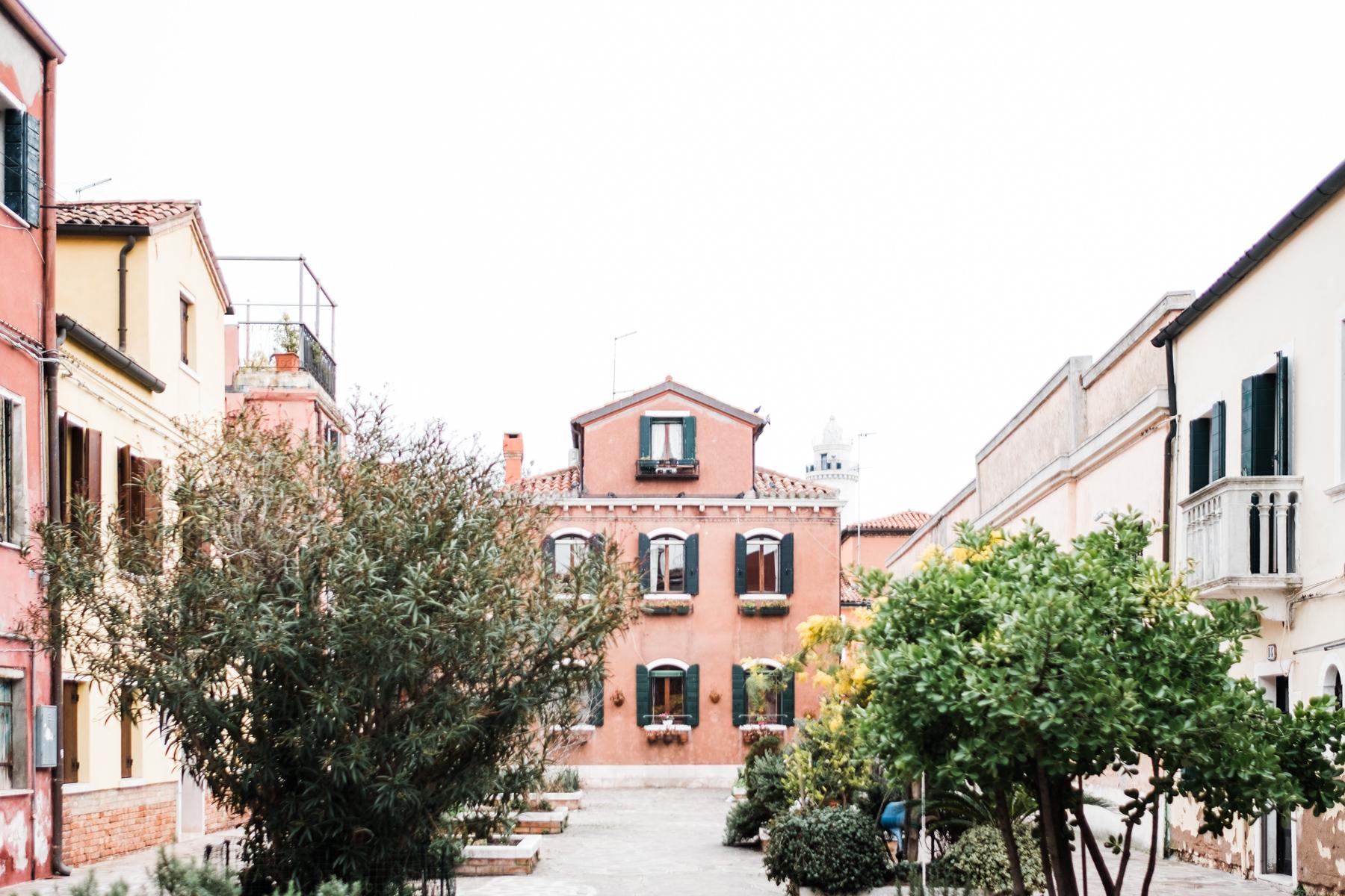 Venice_deersphotography-187