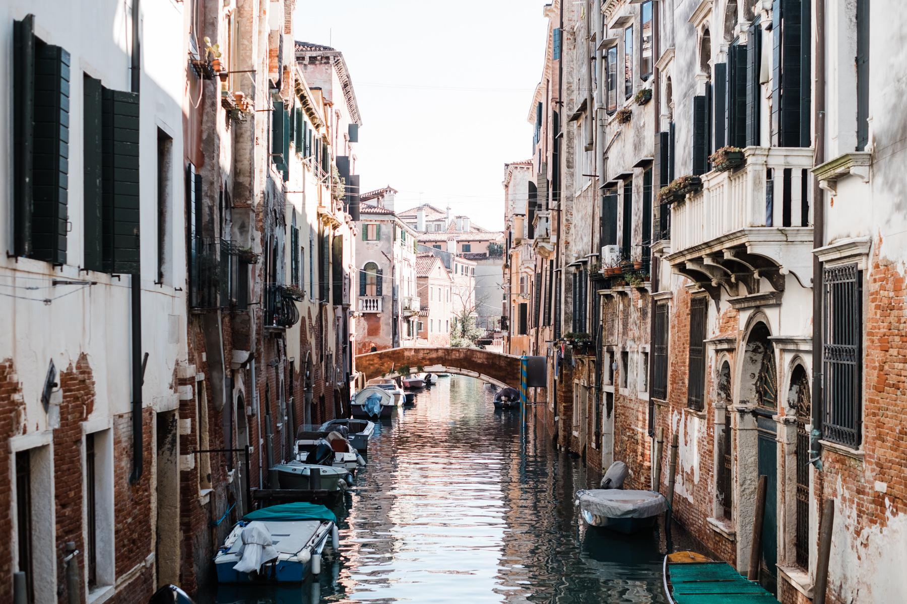Venice_deersphotography-299