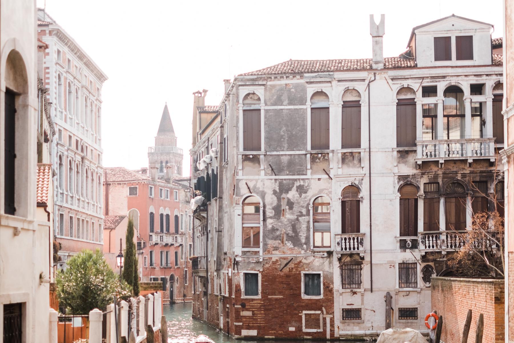 Venice_deersphotography-3
