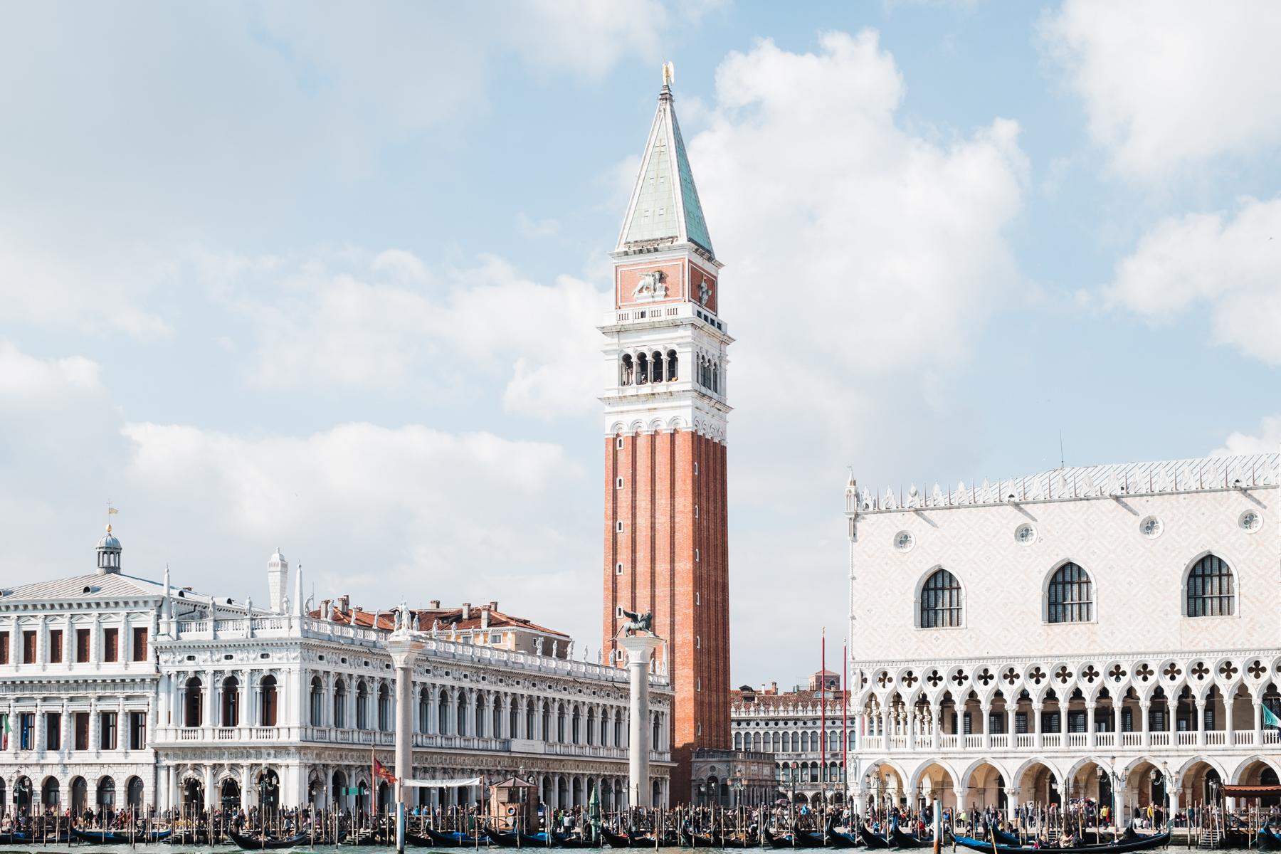 Venice_deersphotography-305